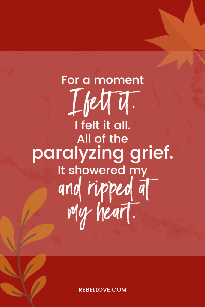 """A pinterest pin that says """"For a moment, I felt it. All of tge paralyzing grief. It showered and ripped at my heart"""" om a red background with leaves on opposite corners"""